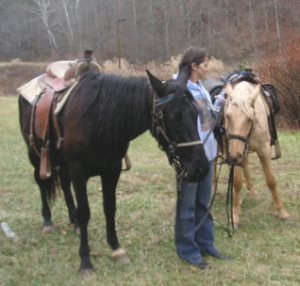 my babies, my friends, my horses..... gotta love em